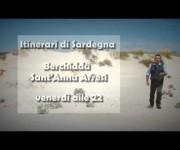 Embedded thumbnail for Servizio televisivo di Videolina sulle dune di Portopino